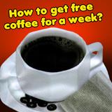 Coffee-Shop-Guide