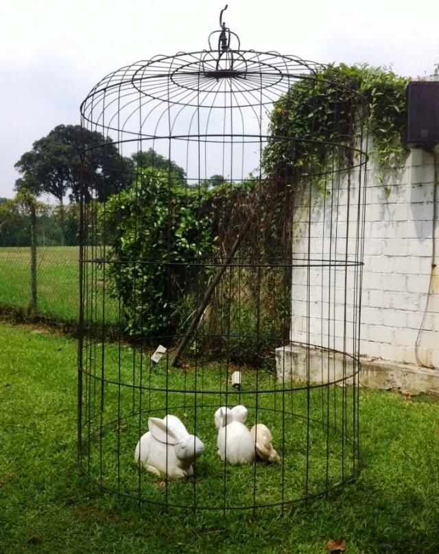 The White Rabbit in Harding Road