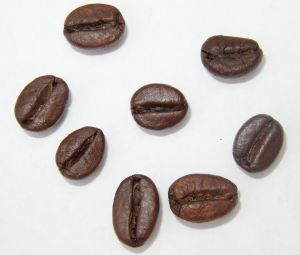 best-coffee-beans