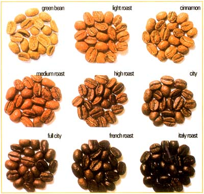 roasted-coffee-bean