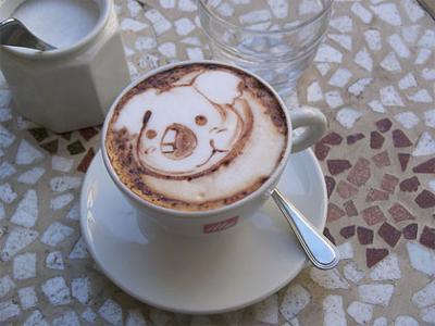 Koala in cappuccino
