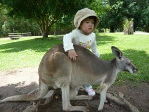 gigi-hugging-kangaroo